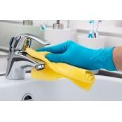 BATHROOM DETERGENTS & LIQUID SOAPS (17)